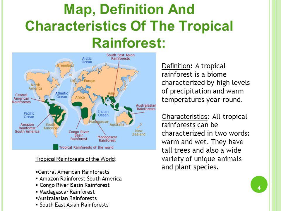 Tropical Rainforests 1 By: Ria Singla, Risansha Chhabra, Pratha ...