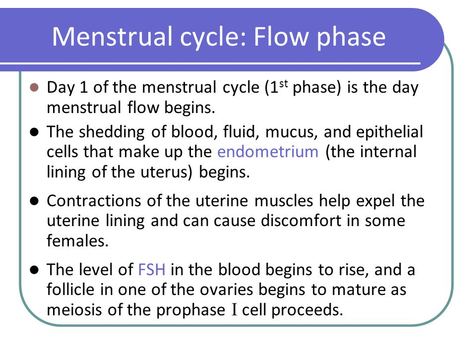how to make menstrual blood flow faster