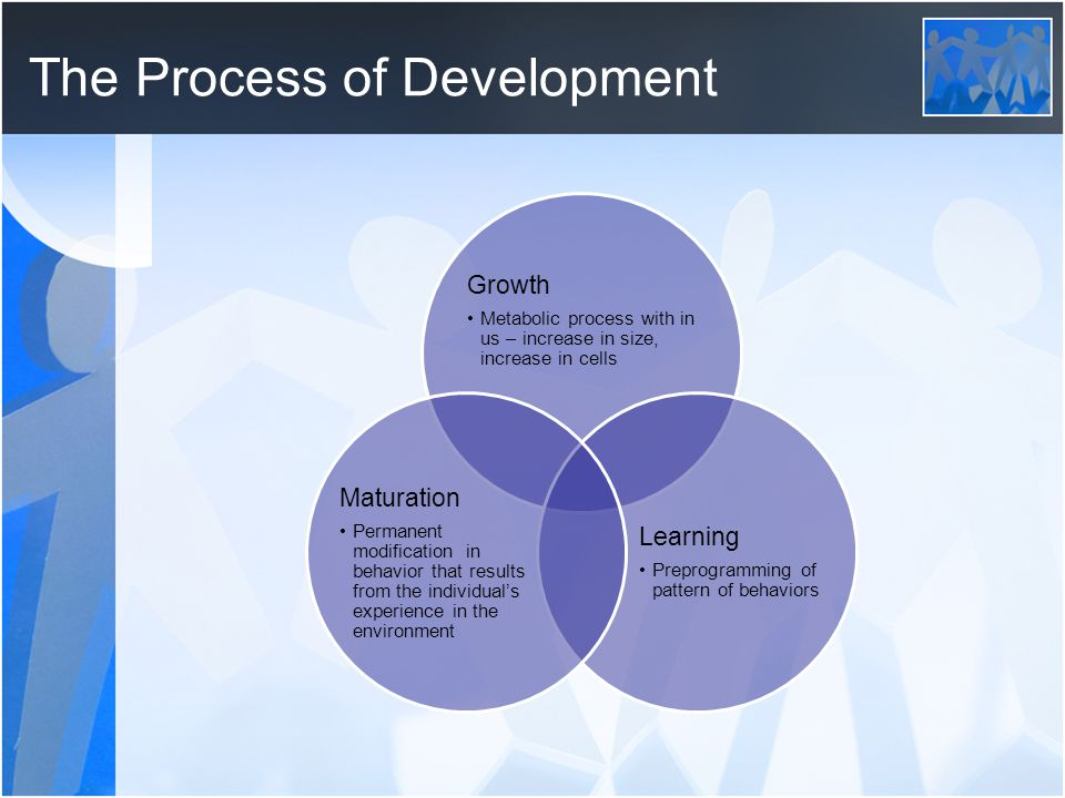 The Process of Development