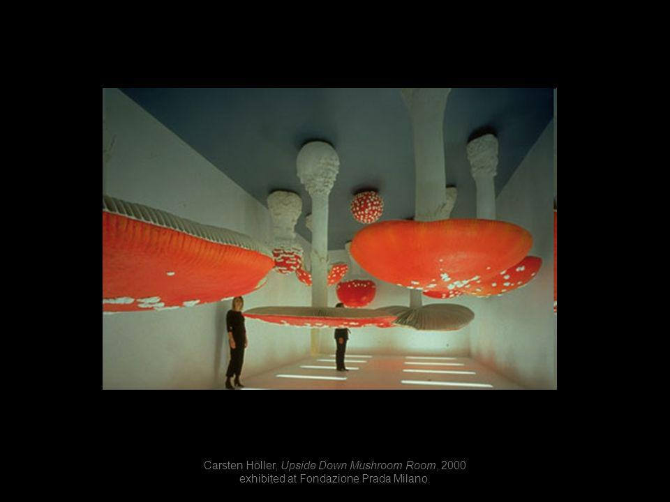 Carsten Höller, Upside Down Mushroom Room, 2000 exhibited at Fondazione Prada Milano.