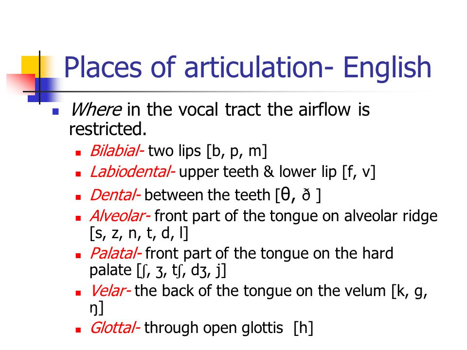 Places of articulation- English