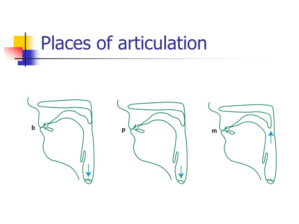 Places of articulation