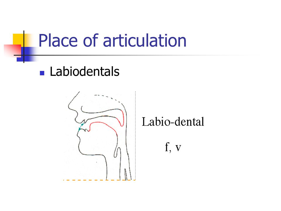 Place of articulation Labiodentals