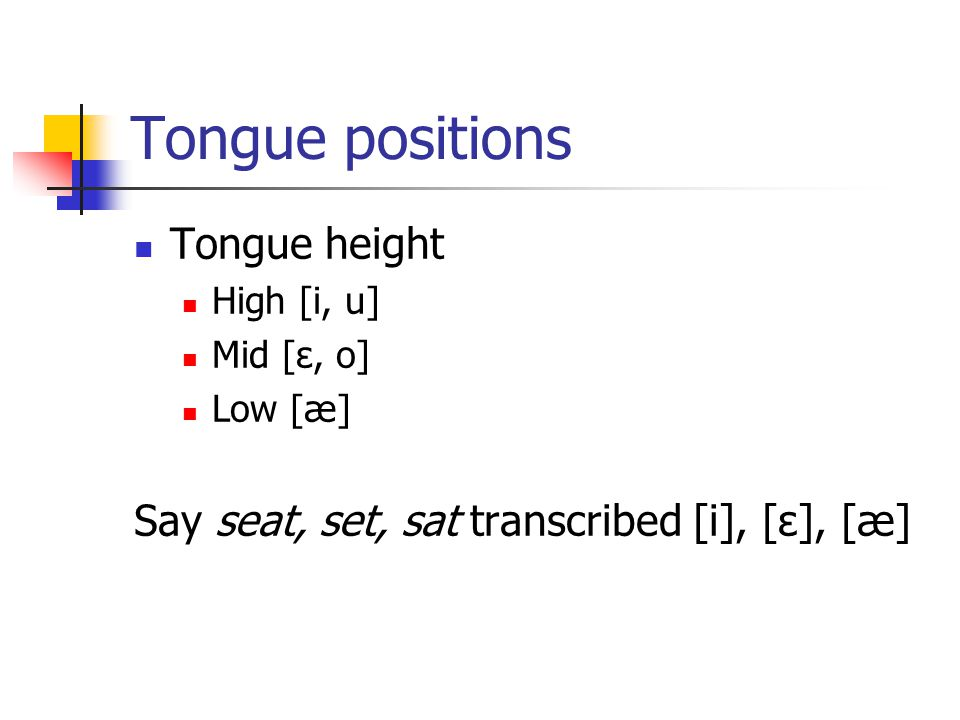 Tongue positions Tongue height
