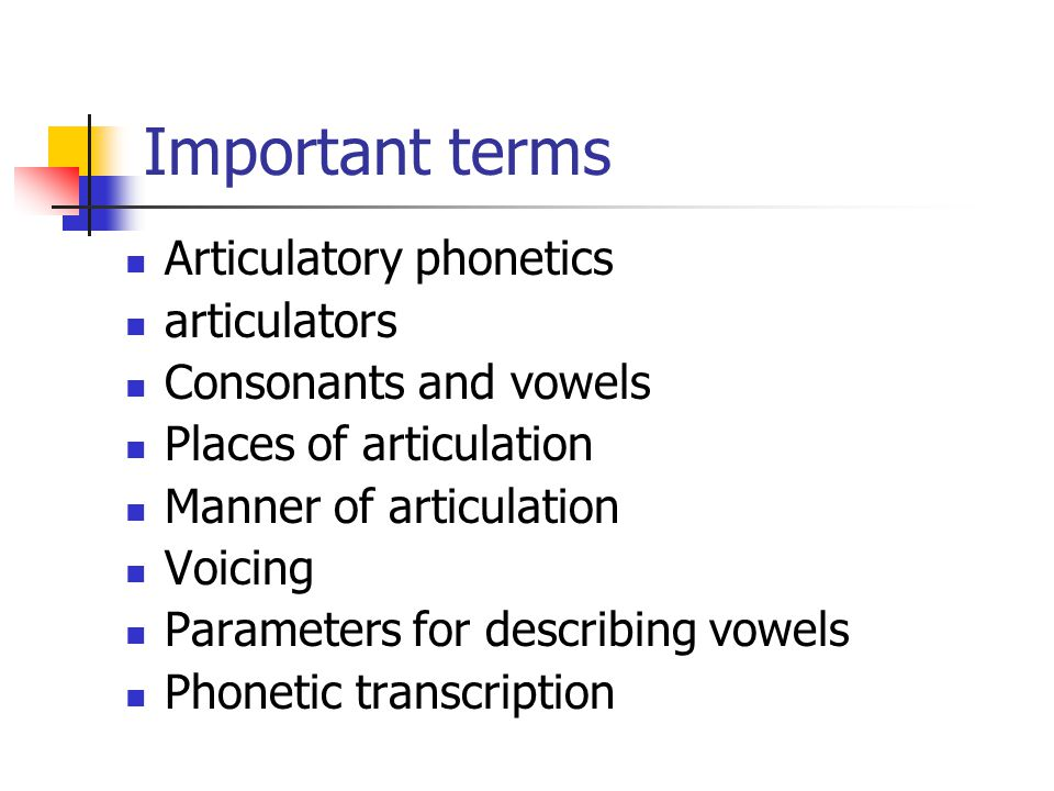 Important terms Articulatory phonetics articulators
