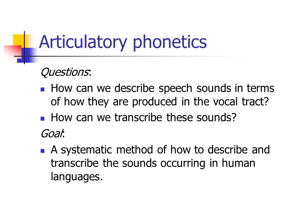 articulatory phonetics Speechproductionand phonetics speech&production&anatomy& » overview,&source6filter&model&of&speech&production& » vocal&tract& » larynx,&glottis& articulatory.