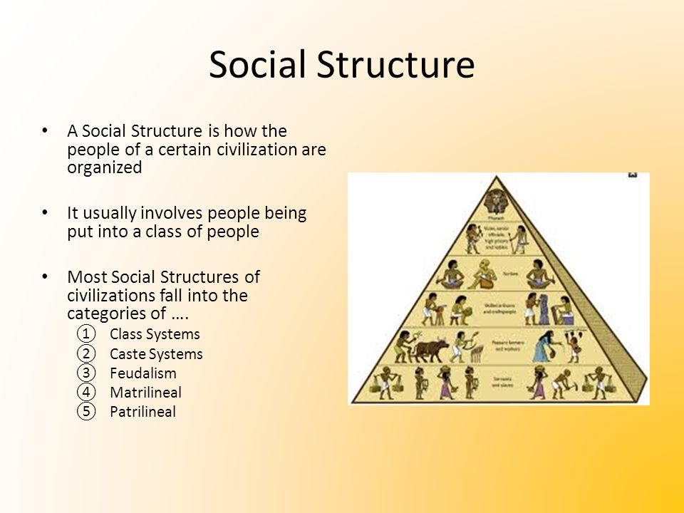 social structure of the society Social structure, including roles and norms, emerges from human interaction   we can create some structure to mimic the presence of society.