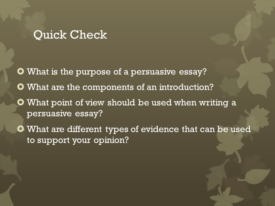 what point of view should a persuasive essay be written in