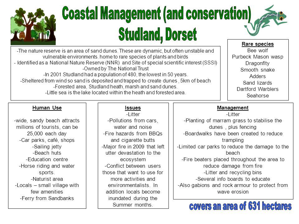 managing dorset s coasts Coastal defence management the coast at west bay is an eroding landscape, with various processes involved  wikimedia commons has media related to west bay, dorset.