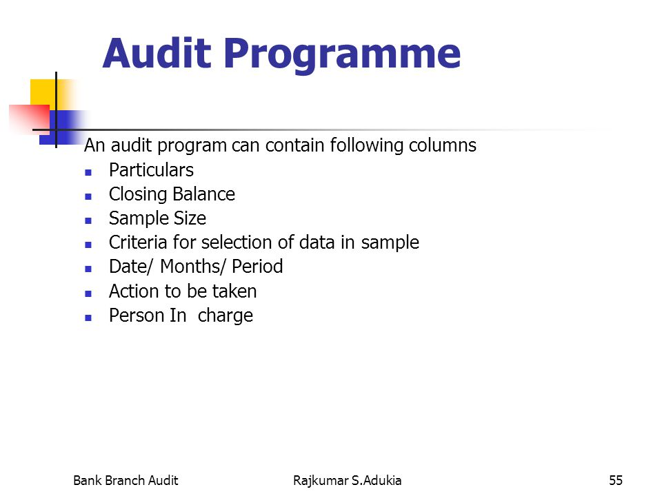 Statutory Bank Branch Audit  Technical And Practical Aspects
