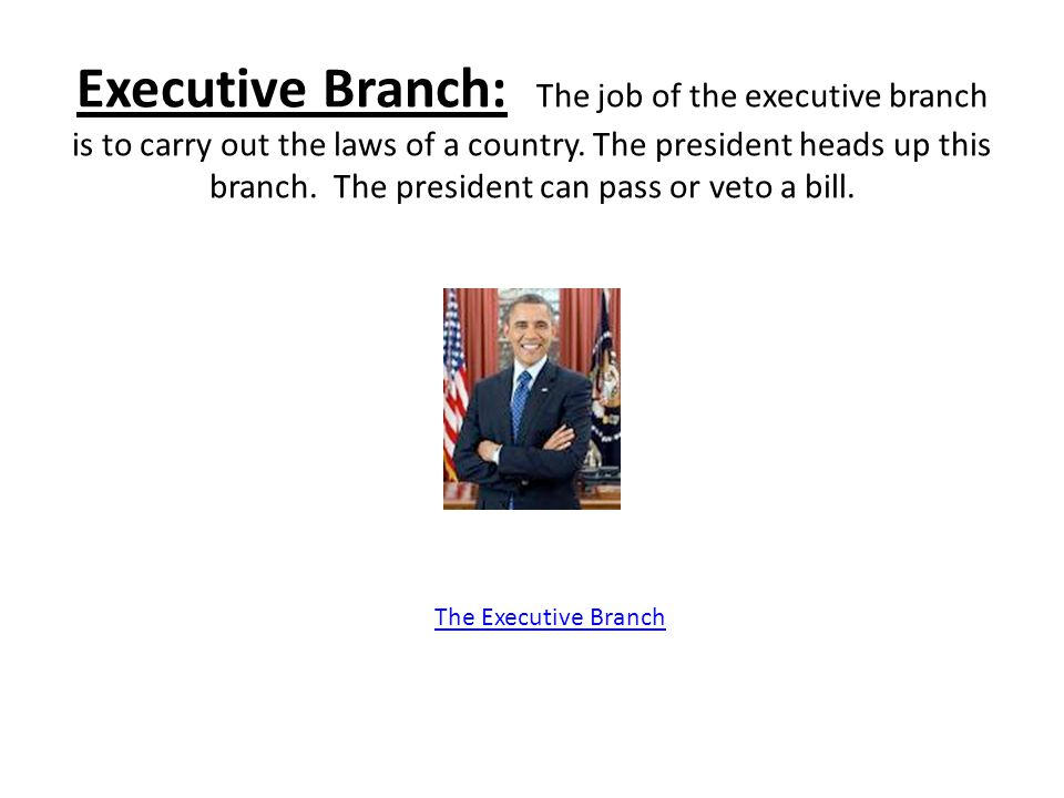 Executive Branch: The job of the executive branch is to carry out the laws of a country. The president heads up this branch. The president can pass or veto a bill.