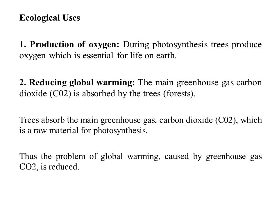 Ecological Uses 1. Production of oxygen: During photosynthesis trees produce oxygen which is essential for life on earth.