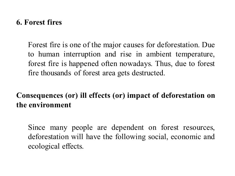 6. Forest fires