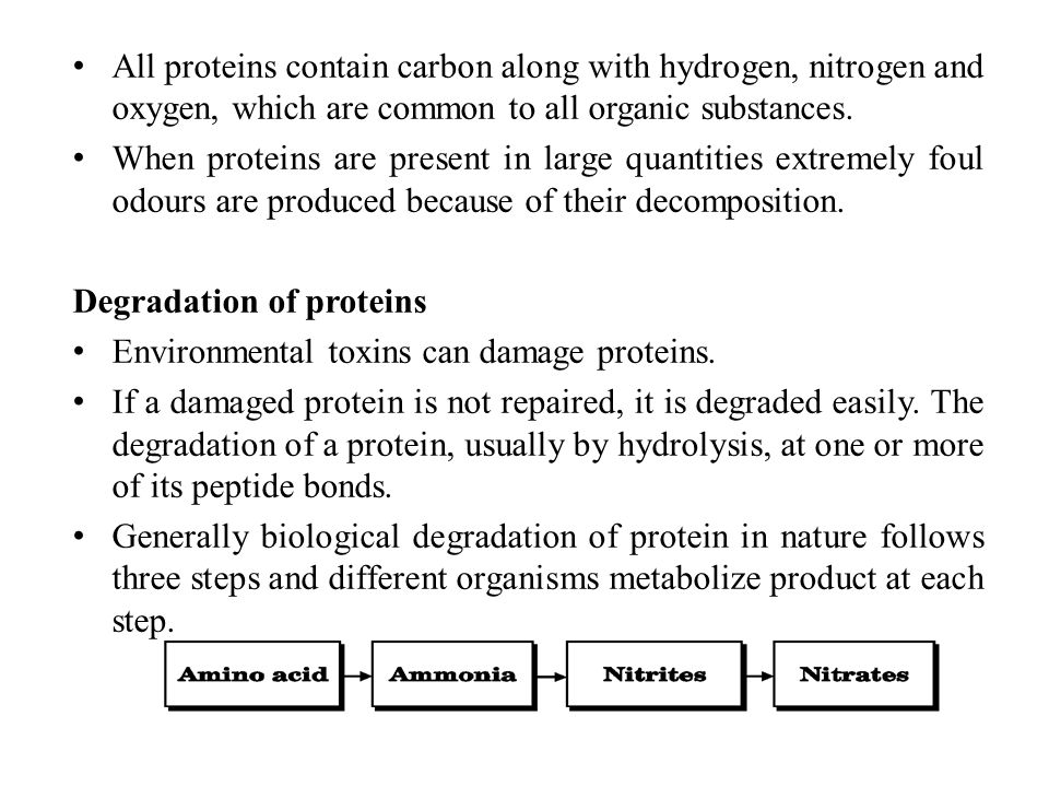 All proteins contain carbon along with hydrogen, nitrogen and oxygen, which are common to all organic substances.