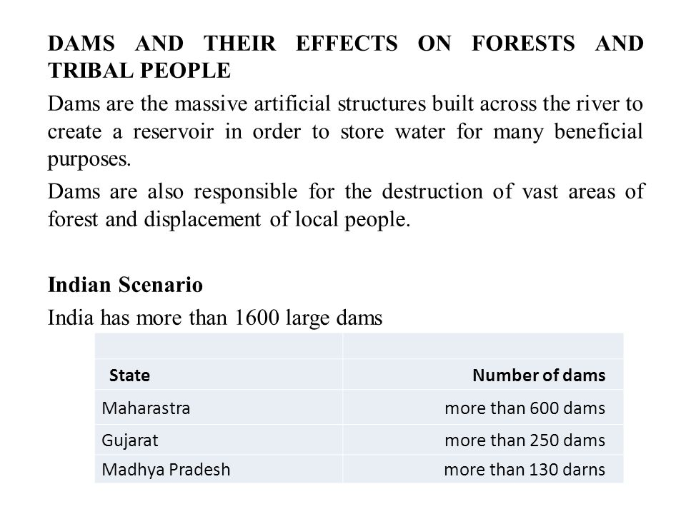 DAMS AND THEIR EFFECTS ON FORESTS AND TRIBAL PEOPLE