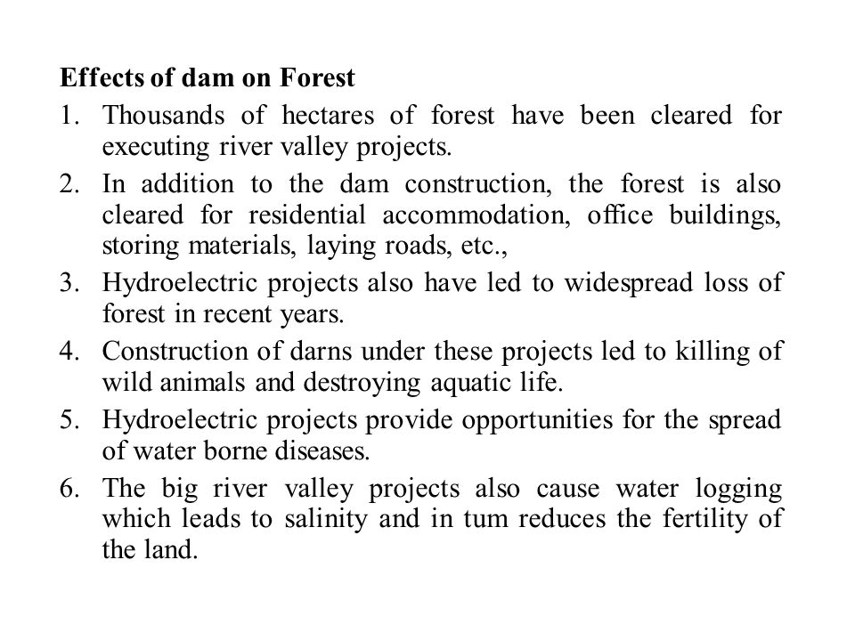 Effects of dam on Forest