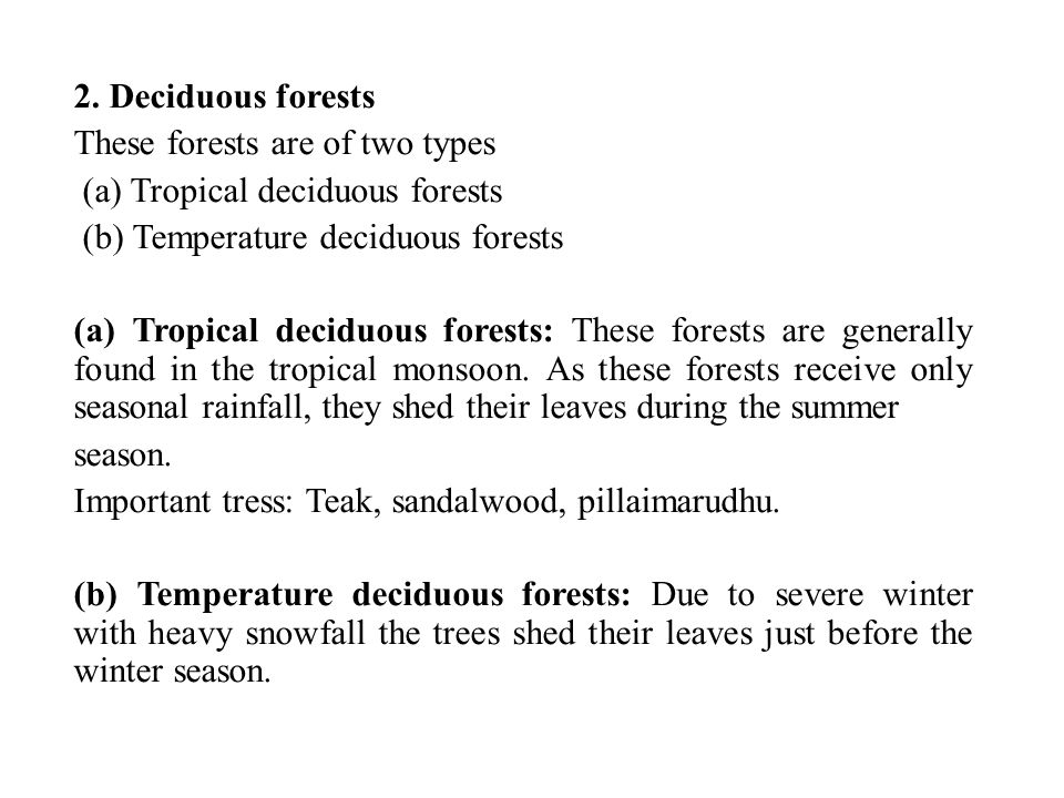 2. Deciduous forests These forests are of two types. (a) Tropical deciduous forests. (b) Temperature deciduous forests.