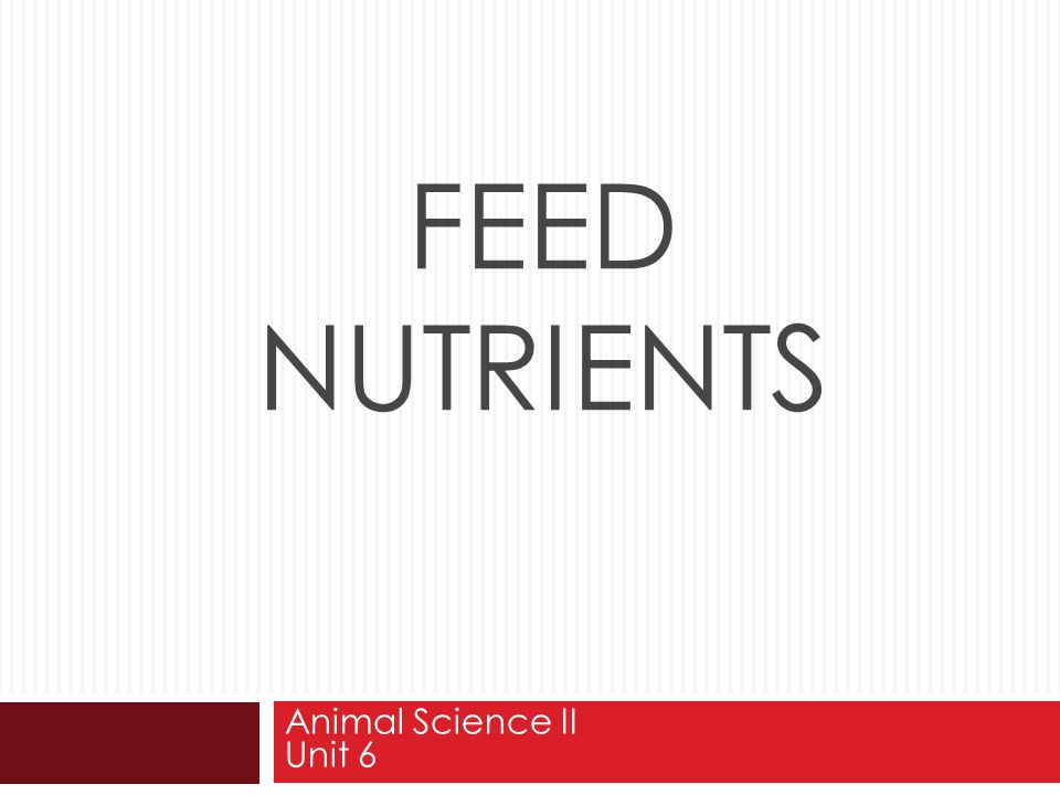 Feed Nutrients Animal Science II Unit 6