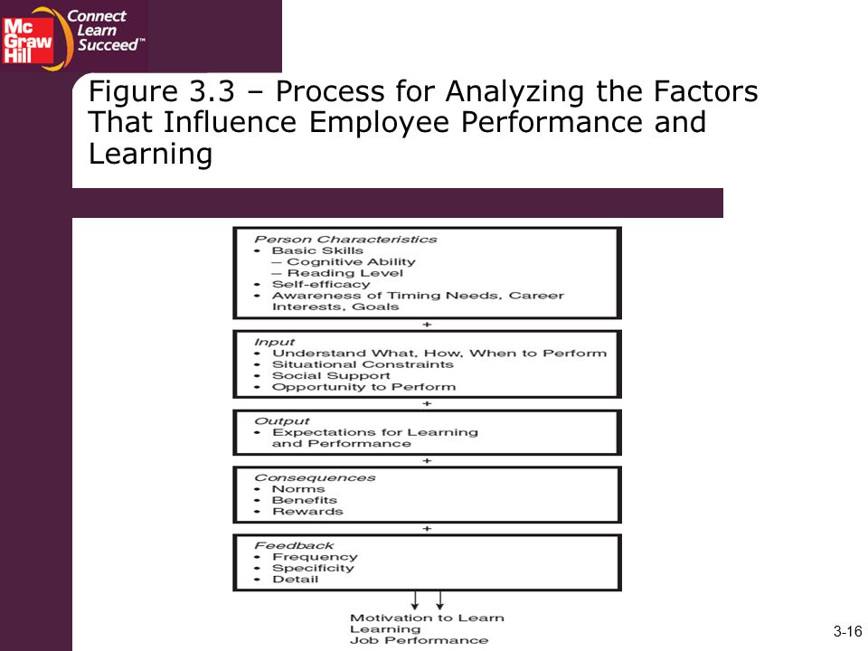 Figure 3.3 – Process for Analyzing the Factors That Influence Employee Performance and Learning