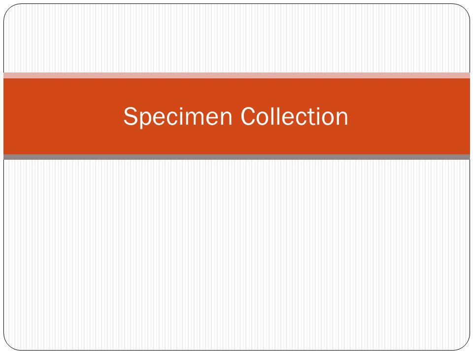 specimen collection - photo #19
