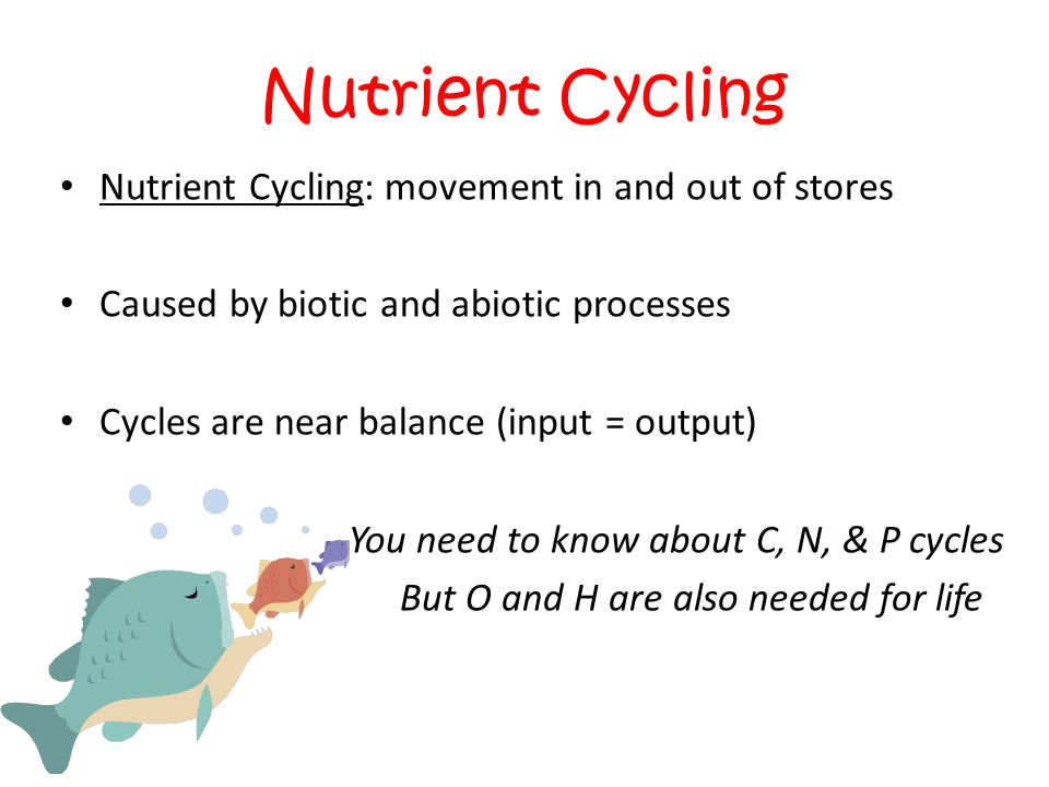 chapter 2 nutrient The science of nutrition (sci70) course learning objectives chapter 1 what you eat and why overview  nutrient intake 2.