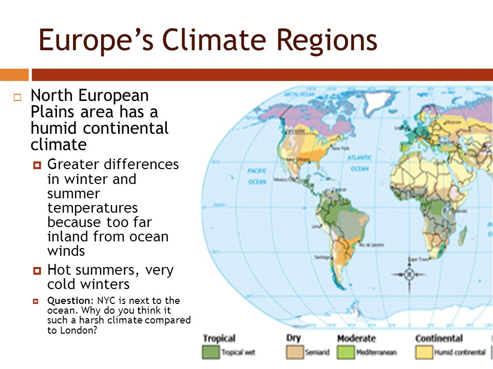 the climate and vegetation of shanghai Report abuse transcript of climate and vegetation of russia most of the climate lies north of the arctic circle it takes about 10% of russia only mosses, lichen, algae, and dwarf shrubs thrive in the tundra because of, short growing season and thin acid soil lying above the permafrost.