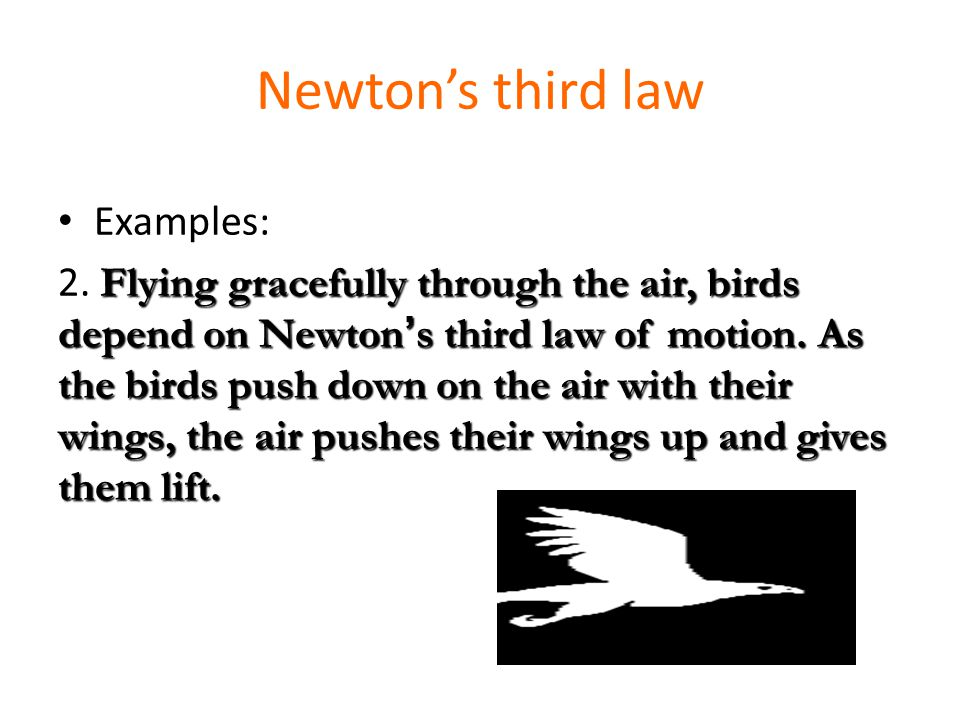 Newton S Third Law Of Motion Textbook P Ppt Video