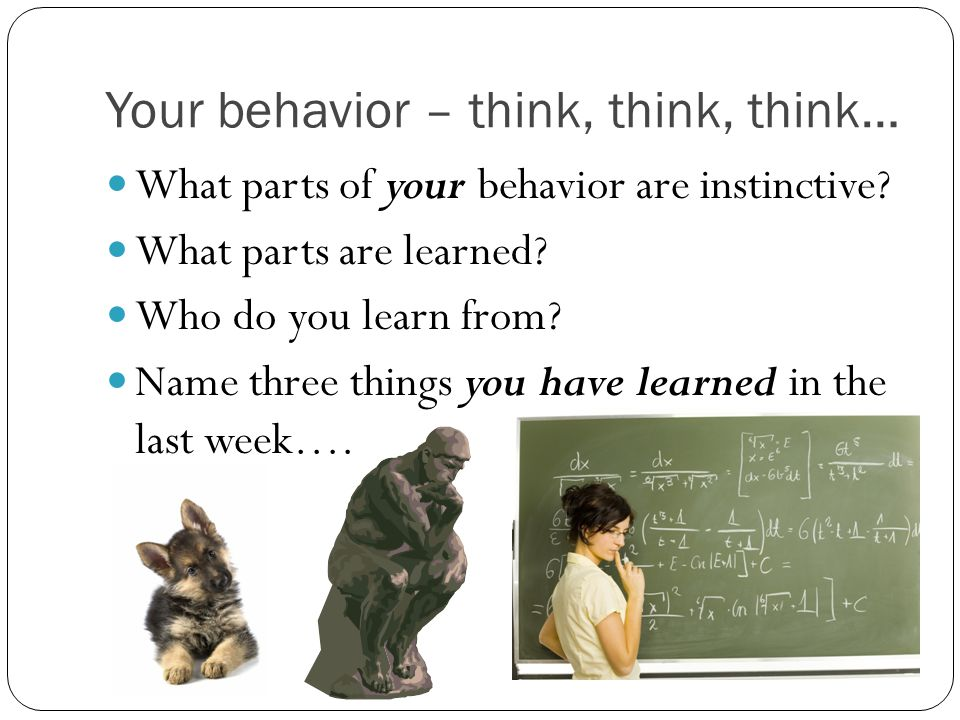 Your behavior – think, think, think…