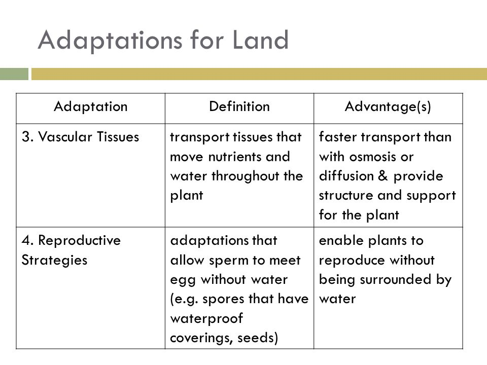 Adaptations for Land Adaptation Definition Advantage(s)