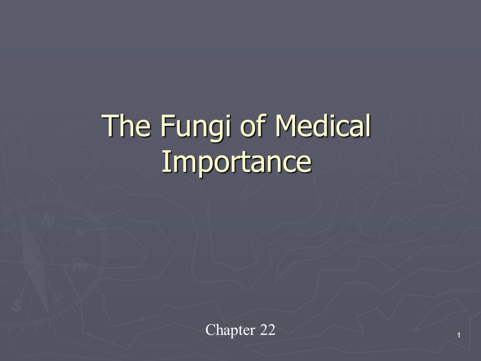 importance of medical fungi With this in mind, we welcome contributions on aspects of the role of fungi in  tropical forests and particularly their interactions with trees and the implications of .