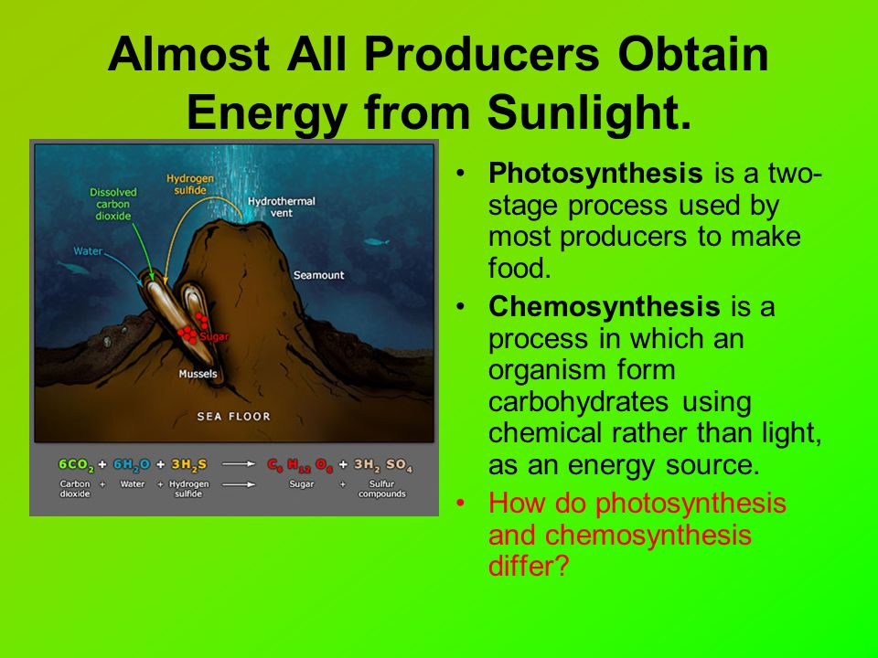 where does the energy come from in chemosynthesis But where does the stored energy in food originate all of this energy can be traced back to the process of photosynthesis and light energy from the sun.