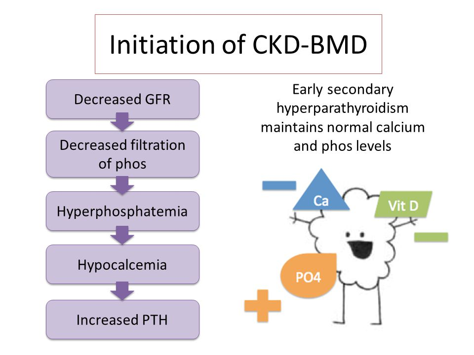 bone and mineral disorders in chronic kidney disease ppt