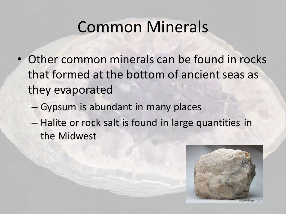 Common Minerals Other common minerals can be found in rocks that formed at the bottom of ancient seas as they evaporated.