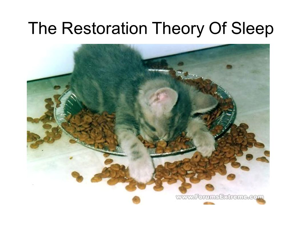 a study on restoration theories of sleep The neuroscience of sleep is the study of the neuroscientific and physiological basis of the nature of restoration wound healing has been shown to be this could explain some of the early theories of sleep function that predicted that sleep has a metabolic regulation role.