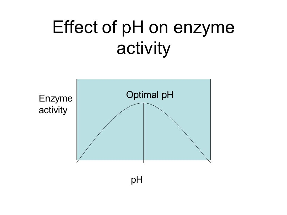 ph appearance concerning enzyme activity