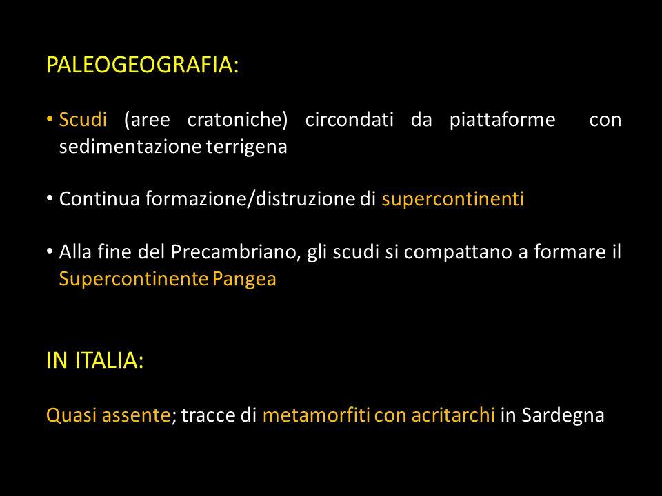 PALEOGEOGRAFIA: IN ITALIA: