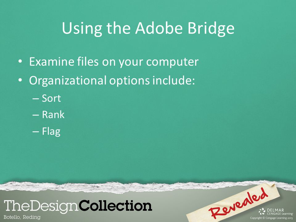 Using the Adobe Bridge Examine files on your computer