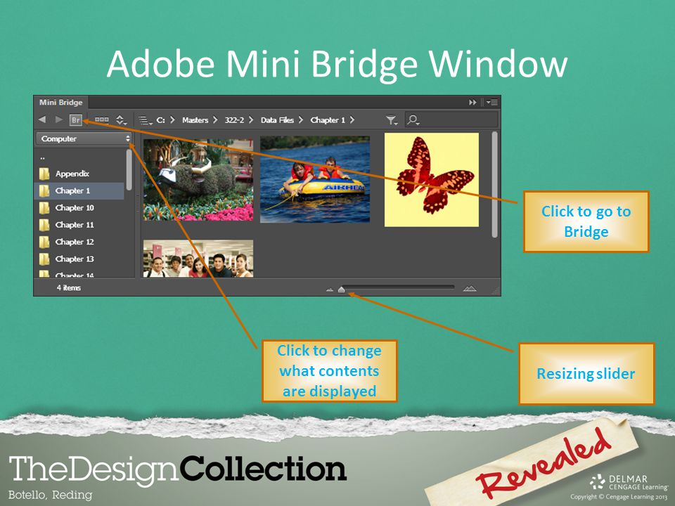 Adobe Mini Bridge Window