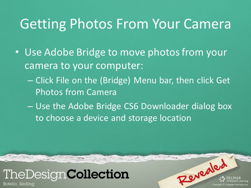 Getting Photos From Your Camera