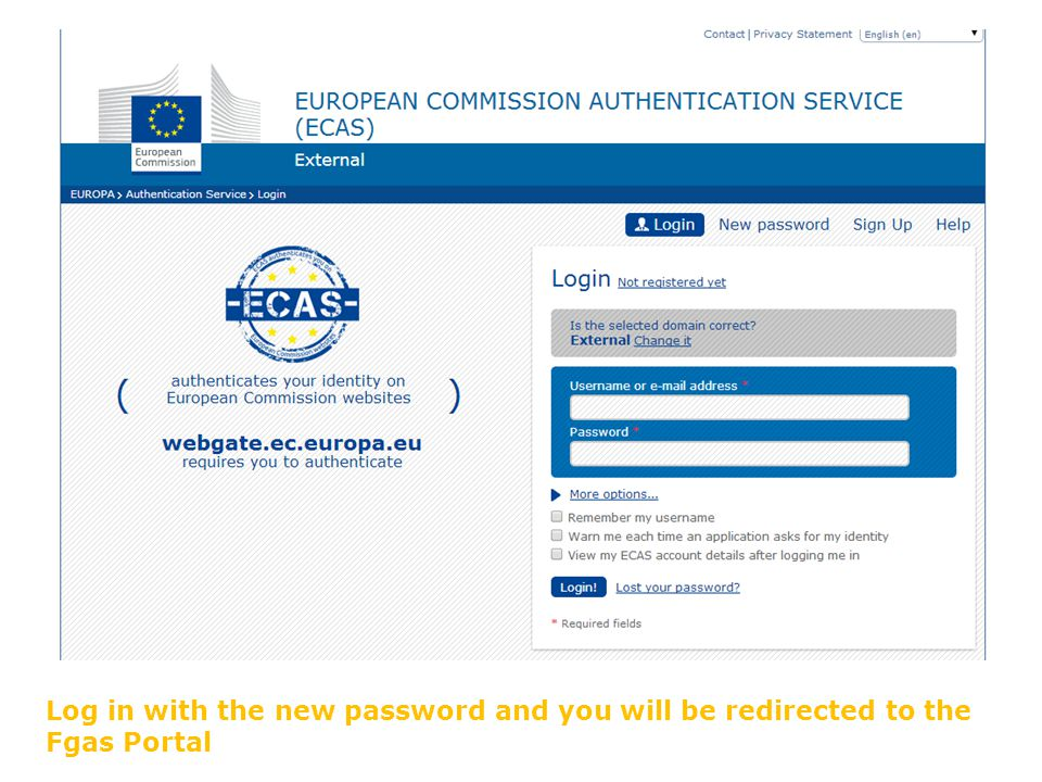 Log in with the new password and you will be redirected to the Fgas Portal