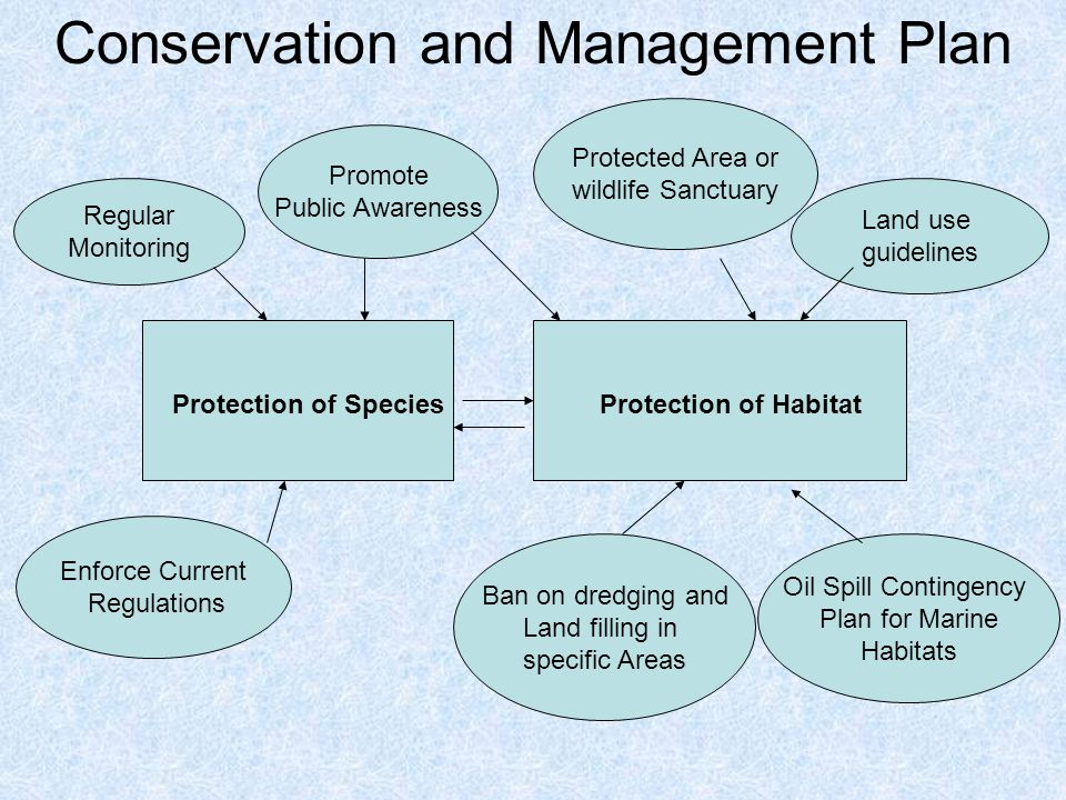 nssc guidelines for conservation and land management