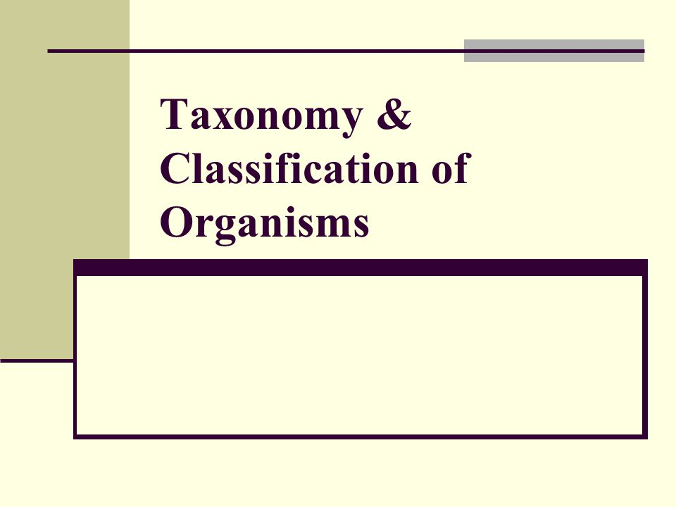 Taxonomy & Classification of Organisms