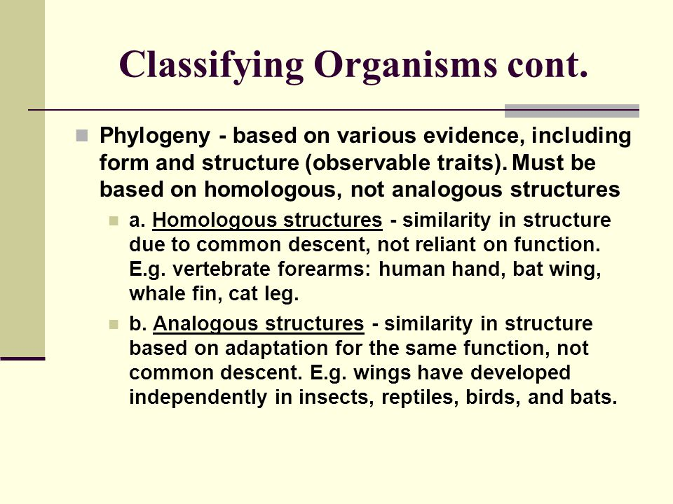 Classifying Organisms cont.