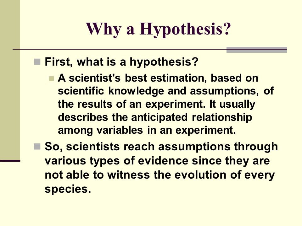 Why a Hypothesis First, what is a hypothesis