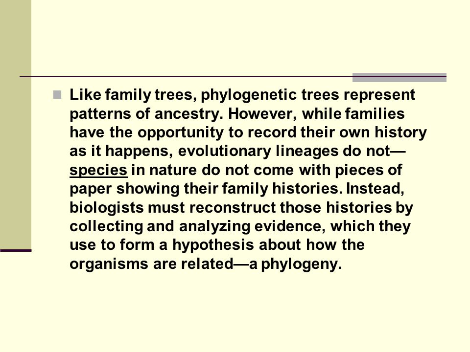 Like family trees, phylogenetic trees represent patterns of ancestry