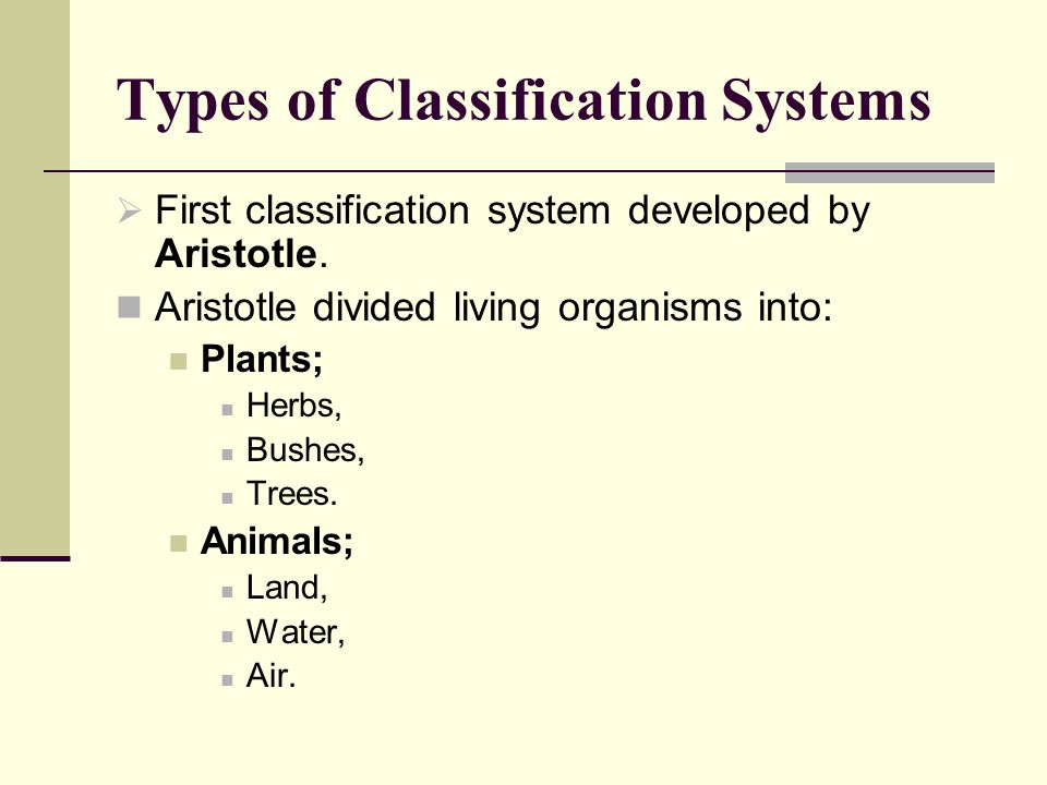Types of Classification Systems