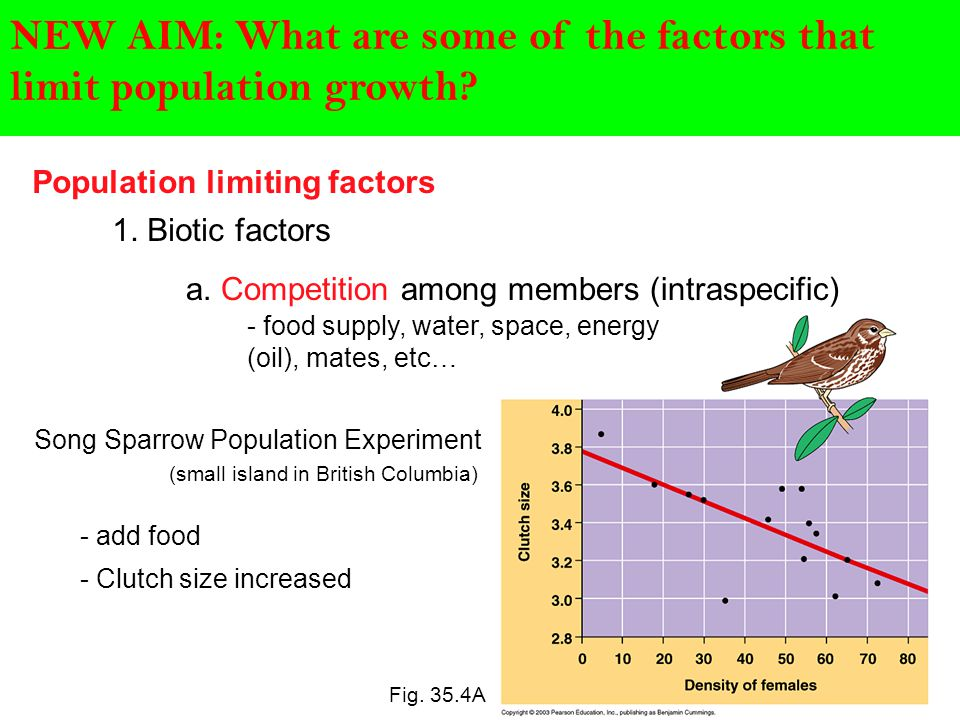 The Human Population: Factors that Affect Population Size