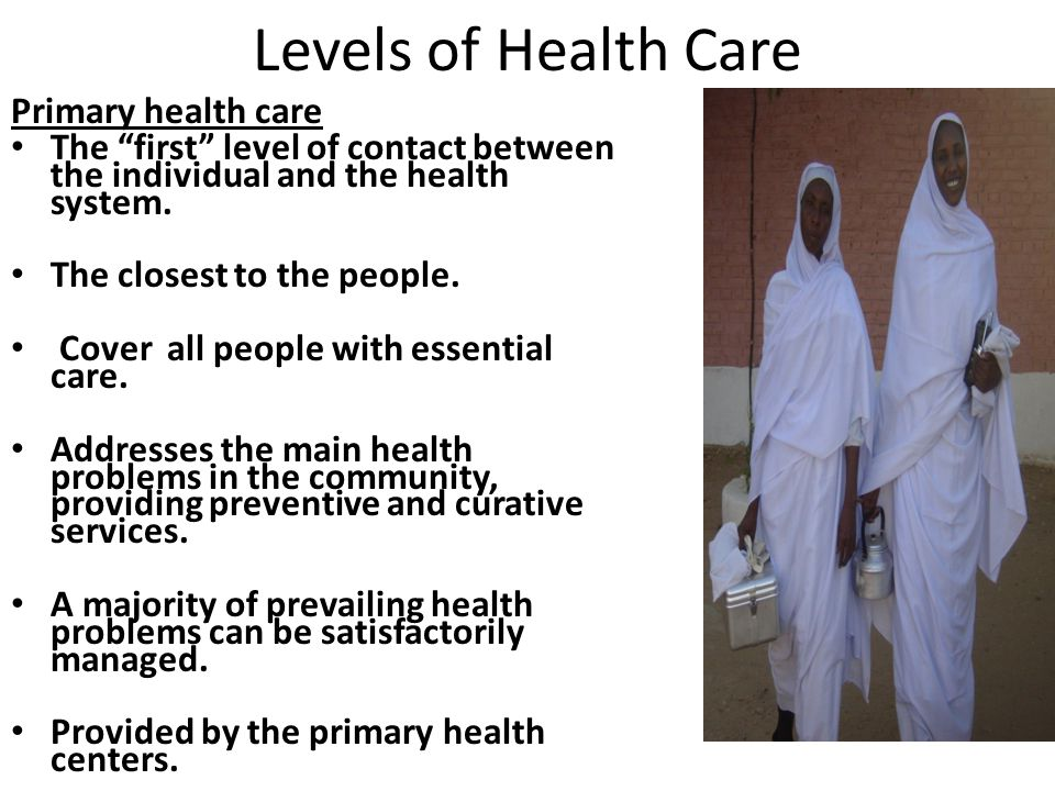 primary health system
