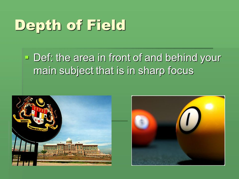 Depth of Field Def: the area in front of and behind your main subject that is in sharp focus