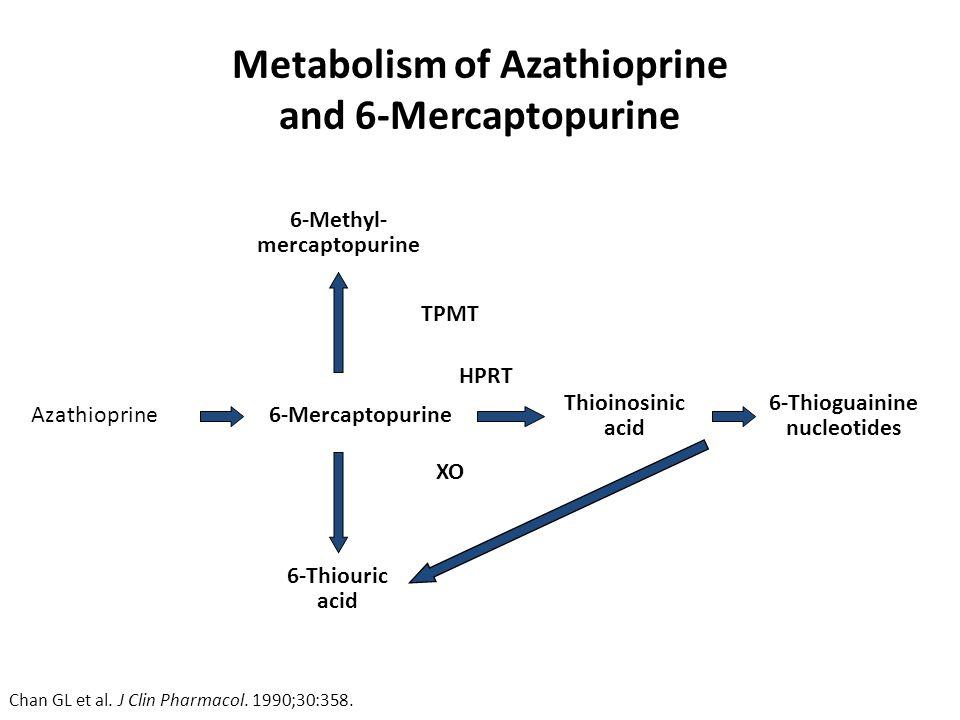 steroid responsive meningitis